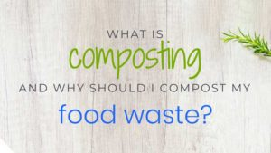 What is Composting and Why Should I Compost My Food Waste?